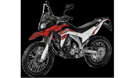 Мотоцикл Loncin LX300GY-A DS2 Pro